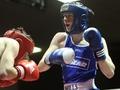 Intermediate boxing round-up