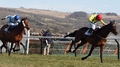 Sizing Europe takes Arkle honours