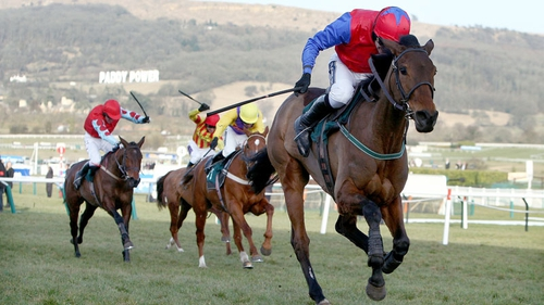 Quevega will aim to be coming up the Cheltenham hill in front again on 12 March