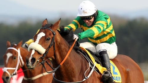 Captain Cee Bee - Will be a major addition to the field for the jumping highlight at Ballybrit