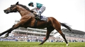 Stoute goes to Work for Derby glory