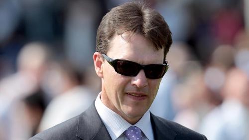 Aidan O'Brien has plenty of interest in Irish Stallion Farms EBF (C & G) Maiden