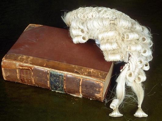 Landmark Surrogacy Case in the High Court