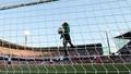 Goal-line technology back on FIFA agenda