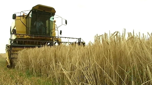 Tillage farmers have called for help