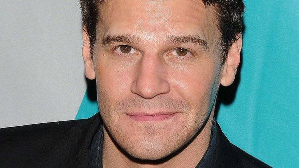 David Boreanaz - 'I would love a role in Downtown Abbey'
