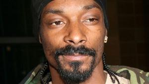 Ask Snoop anything