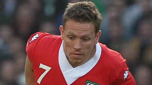 Craig Bellamy will captain Wales for the Gary Speed memorial match