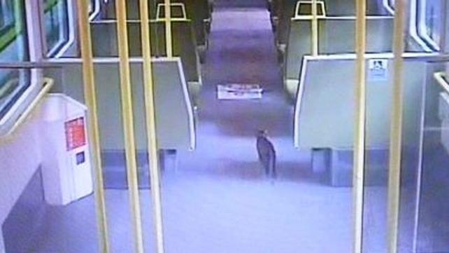 Lilou - Caught on CCTV