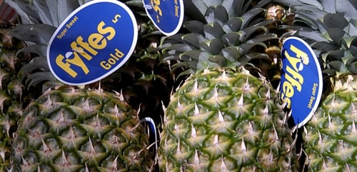 Fyffes is putting merger plans in place despite moves by a Brazillian investment firm to buy out Chiquita