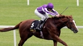 O'Brien leading lights remain in QEII