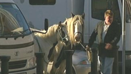 Smithfield Horse Fair - Tradition dates back hundreds of years