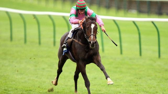 Dream Ahead - the star juvenile looks set to miss next weekend's 2000 Guineas at Newmarket