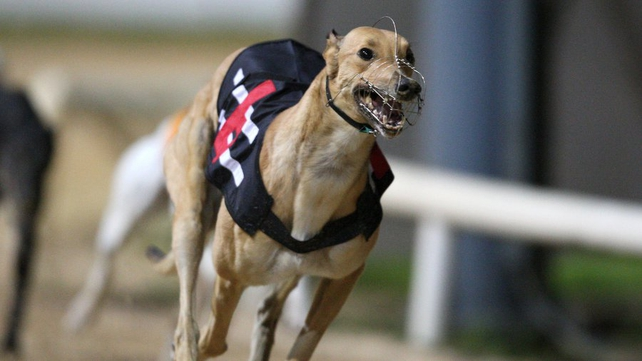Greyhound Racing - EC argues rate could cause a distortion of competition within the EU