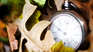 The clocks will go back one hour on 28 October this year