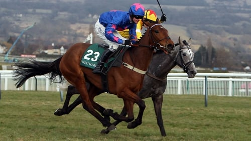 Cue Card impressed on the way to victory in the Ascot Chase