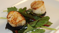 Pan Seared Scallops with Black Pudding and Dressed Rocket Leaves - To serve, place the dressed leaves on your plate, then arrange two of the black pudding discs on top before each slice is topped with a scallop.