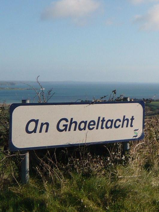 Anna Ní Ghallchóir, Cathaoirleach Bord Údarás na Gaeltachta.