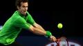 Murray undone by Djokovic defence