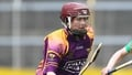 Wexford get better of Galway once again