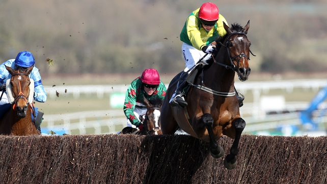 Sizing Europe will be aimed at the Champion Chase at the Cheltenham Festival