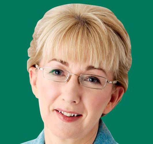 Dara Calleary, Fianna Fáil, faoi ainmniúchán Mary Hanafin sna toghcháin áitiúla.