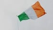 Flags to be distributed for 1916 celebrations