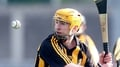 Fitzpatrick retires from Kilkenny hurling
