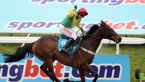 Sizing Europe winning the 2011 Queen Mother Champion Chase