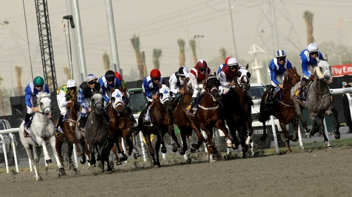 Meydan's World Cup card boasts more prize money than any other meeting on the planet