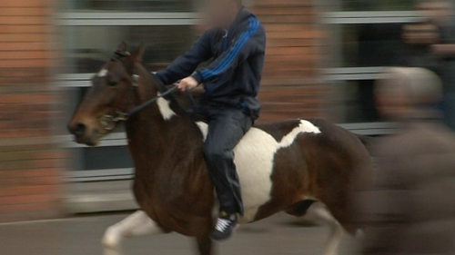 Galloping horse - Was stopped by gardaí