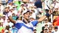 Djokovic overcomes Nadal to take title