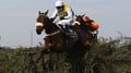 Ballabriggs best in 2011 Grand National