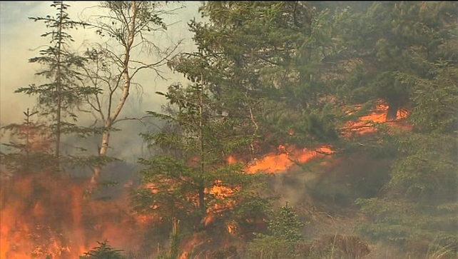 Gorse fires - Efforts to prevent flames from spreading