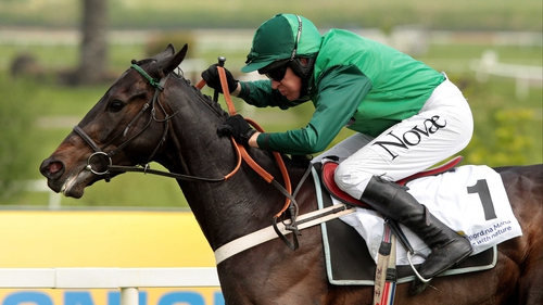 Grandouet fell when in contention in Tuesday's Champion Hurdle