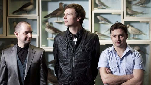 Bell X1 - New album out this summer