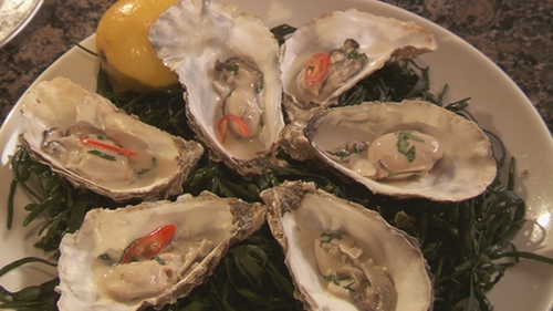 Martin Shanahan's Hot Oysters in Coconut Milk