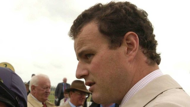 David Wachman has considerable experience training the family of Little Fastnet