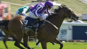 St Nicholas Abbey eyes more success on the Downs