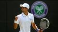 Djokovic advances with ease