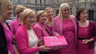 Leinster House - TDs and Senators mark 'Pink Friday'