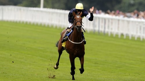 Nathaniel - The progressive three-year-old was hugely impressive in the King George