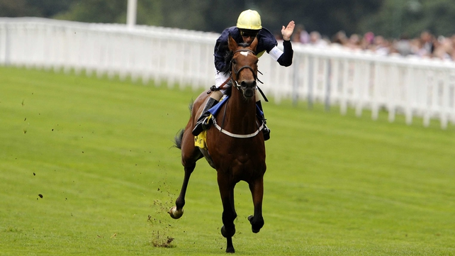 King George winner Nathaniel looks set to miss the Arc in favour of the Champion Stakes