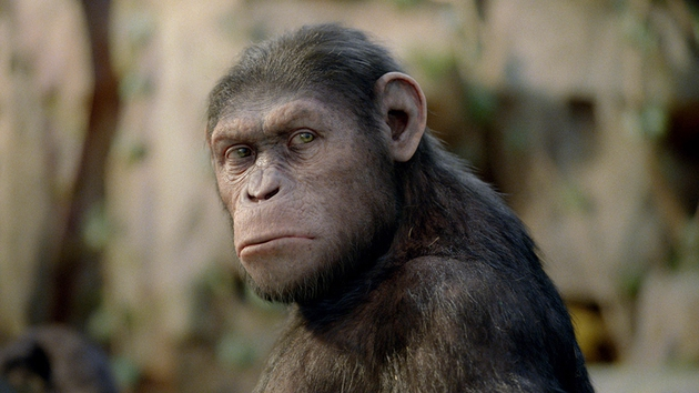 A cene from Rise of the Planet of the Apes