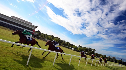 The weather looks as it may be kind for the Christmas meeting at Leopardstown