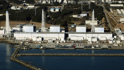 The reactors are the first to come back on line after they were all shut down following the Fukushima crisis