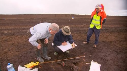 National Museum and Bord na Móna workers have spent the day working on the remains