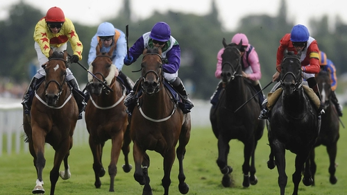 Hayley Turner on Margot Did (third from left in purple) goes on to win the Nunthorpe