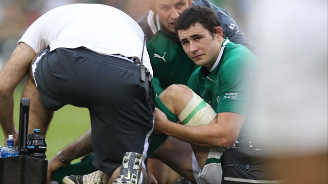 Felix Jones is attended to by the Ireland physios on the Aviva Stadium pitch