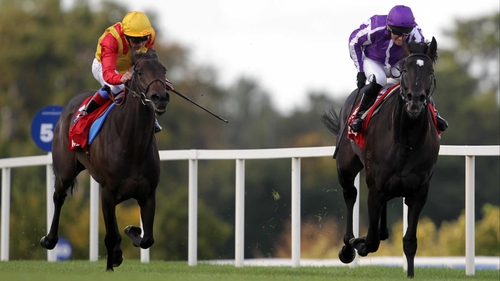Jockey and trainer's son Joseph O'Brien believes So You Think (r) could be a better horse this year than last